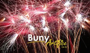 Buny Artifice - Feux d'artifices